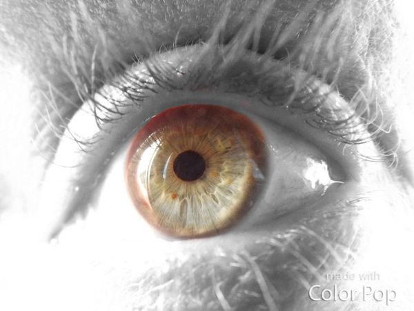 Human Eye Eye Black And Color Intresting Eye Lashes Human Story Age Amazement And Wonderment