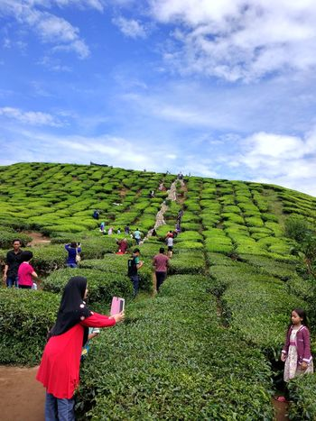 Leisure Activity Large Group Of People Sky Person Men Lifestyles Casual Clothing Tourist Tourism Standing Vacations Grass Cloud - Sky Green Color Mountain Blue Enjoyment Travel Destinations Fun Holding Cameron Highlands Teafarm Teafield Taken With Mi5 Xiaomi Mi5