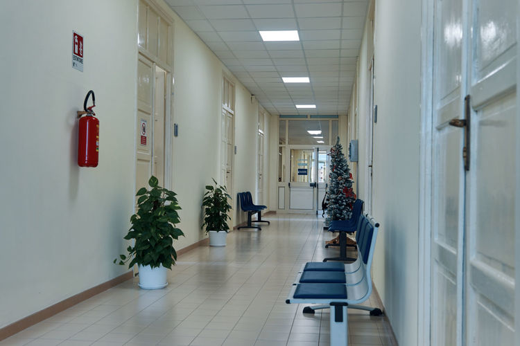 Indoors  Arcade Lighting Equipment Corridor Flooring Building No People Architecture Plant Absence Illuminated Direction Potted Plant Day Empty White Color Domestic Room In A Row Diminishing Perspective Door Ceiling Tiled Floor Electric Lamp christmas tree