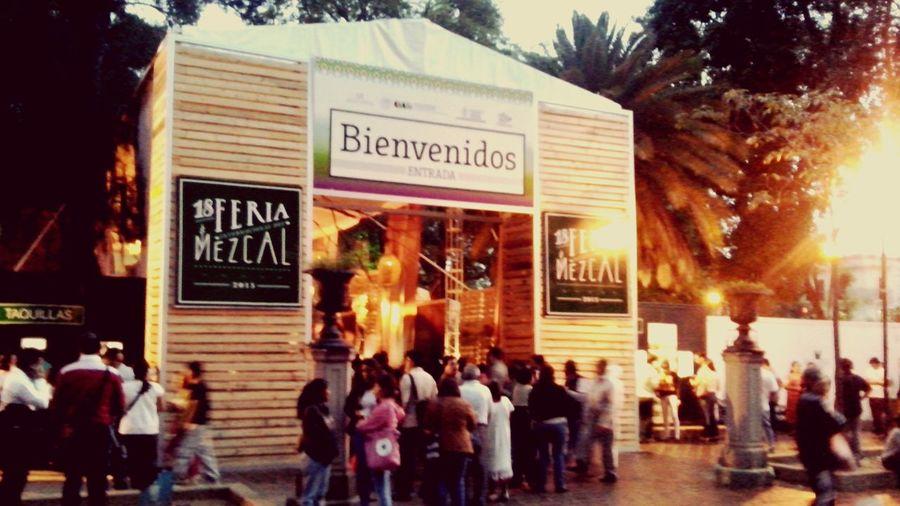 Oaxaca Feria Del Mezcal