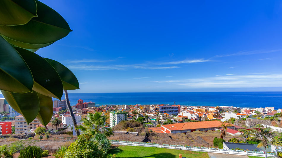 Puerto de la Cruz in the sign of plants and flowers. This week, from October 15 to 21, 2018, the town of Puerto de la Cruz, located on the north coast of Tenerife, is characterized by flowers, flowers and plants. Guided tours through gardens, lectures and botany events take place all over the city. This one-week event is about the flora of the Canary Islands, especially Tenerife. What few know: Here on the island there are almost 500 only on Tenerife occurring and unadulterated plants. Today on the second day I visited the extensive parks on the mountain Taoro. I photographed these pictures of the vegetation and the view of the city today on the 16th of October. More pictures and information will follow later this week. Park Puerto De La Cruz Teneriffa Tenerife Taoro Taoro Park Plants Flowers Flora Botany Garden Touristic Travel Palms Traveling Tourist Destination Travel Photography Landscape_Collection Landscape_photography Architecture Built Structure Building Exterior TOWNSCAPE Cityscape Residential District