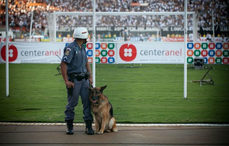 Service Animals during a soccer match in Brazil. Dog is working. Policeman is watching the game.