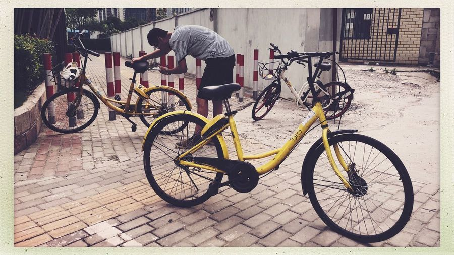 Public Bicycles Shanghai Citylife Streetphotography Bicycle Transfer Print Transportation Mode Of Transportation Land Vehicle Auto Post Production Filter Street Stationary Outdoors Footpath People Men Real People City Full Length Riding Nature Architecture Ride Day