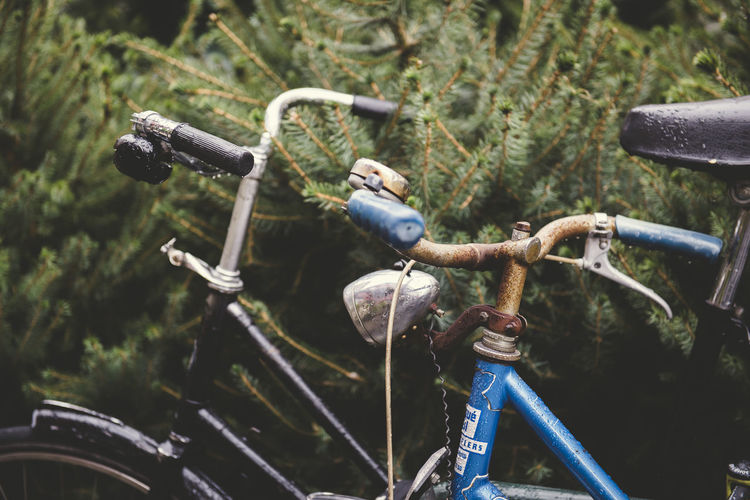 urban bicycles wet from the rain parked on the street, with a background of green plants Bicycle Close-up Day Focus On Foreground Handlebar Land Vehicle Metal Mode Of Transportation Nature No People One Animal Outdoors Plant Transportation Wheel