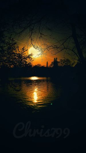 Sunset Silhouettes Reflections In The Water Vintage Photo Sky On Fire Water Reflections Park Walking Sunset In The City  Water Sunset Tree Backgrounds Silhouette Reflection Sky Close-up Dramatic Sky Shining Aurora Polaris Romantic Sky Atmosphere Lakeside Sun Atmospheric Mood Calm Moody Sky