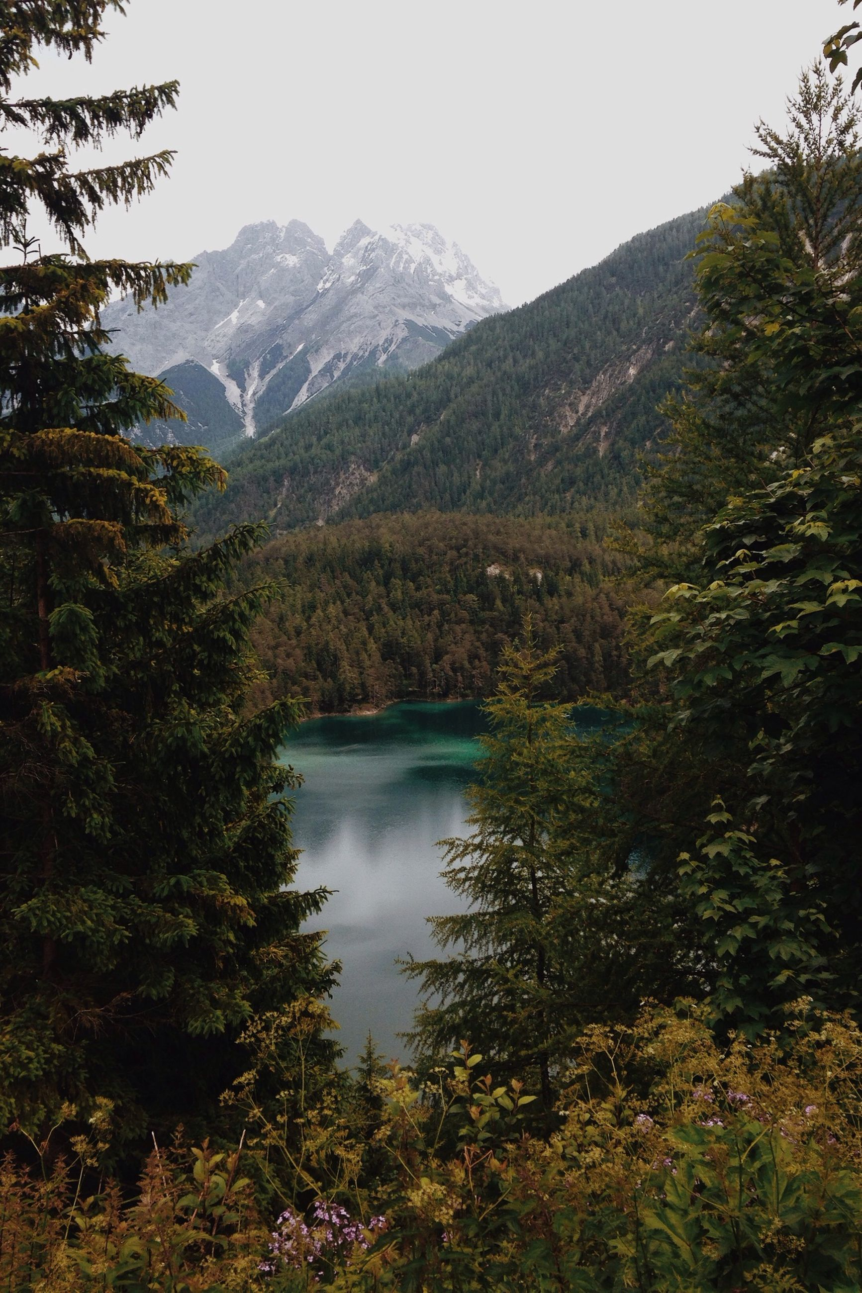 mountain, tranquil scene, tranquility, scenics, beauty in nature, mountain range, tree, water, lake, nature, non-urban scene, reflection, clear sky, landscape, idyllic, sky, river, forest, growth, day