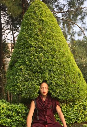 "Myself,my creativity "" Tree Growth Green Color Plant Front View Day Nature One Person Love Yourself Love Yourself EyeEmNewHere"