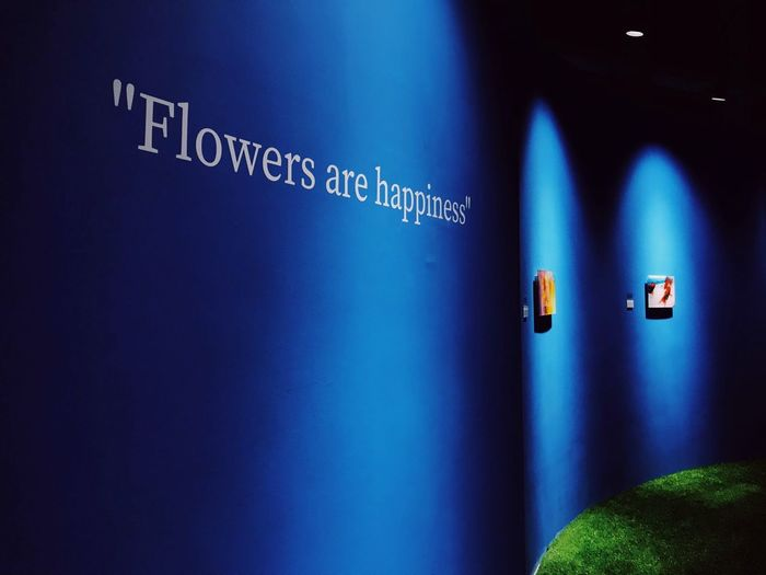 Exhibition Light And Shadow Blue No People Communication Indoors  Text Illuminated Western Script Information Guidance Lighting Equipment