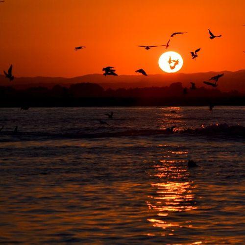 Friday night... <3 EyeEm Best Shots - Sunsets + Sunrise EyeEm Best Shots Beachphotography EyeEm Best Shots - Landscape