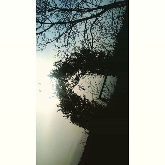 •Sogna la tua vita a colori. È il segreto della felicità.• Snapchat Nofilter Nocrop Sognare Sogna Vita Colori Vitaacolori Segreto Felicità Lafelicità Images Foto Photo Photooftheday Pic Picoftheday Instapic Landscape Paesaggio Natura
