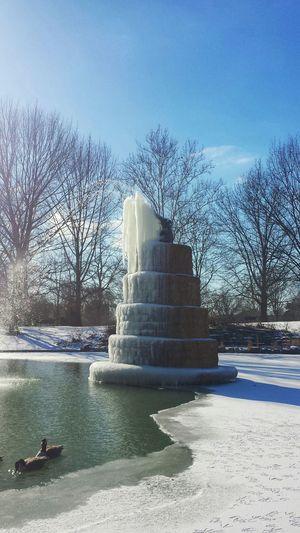 It's Cold Outside Goodale Park 614 Columbus, Ohio Columbus Ohio Short North Ice Icicles Water Fountain Elephants Frozen Frozen Lake