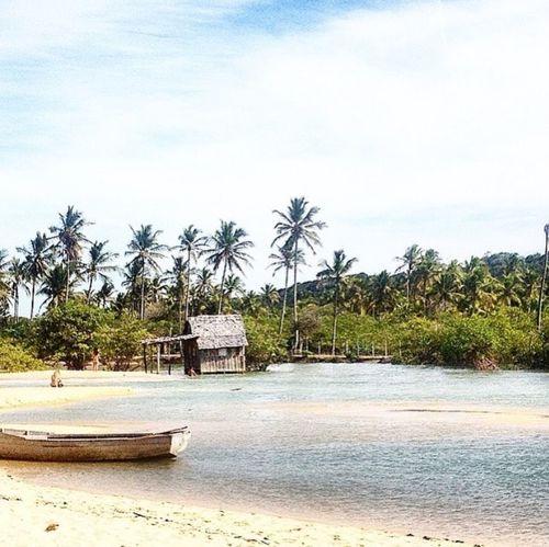 #Brasil #Bahia #trancoso #praiadoscoqueiros