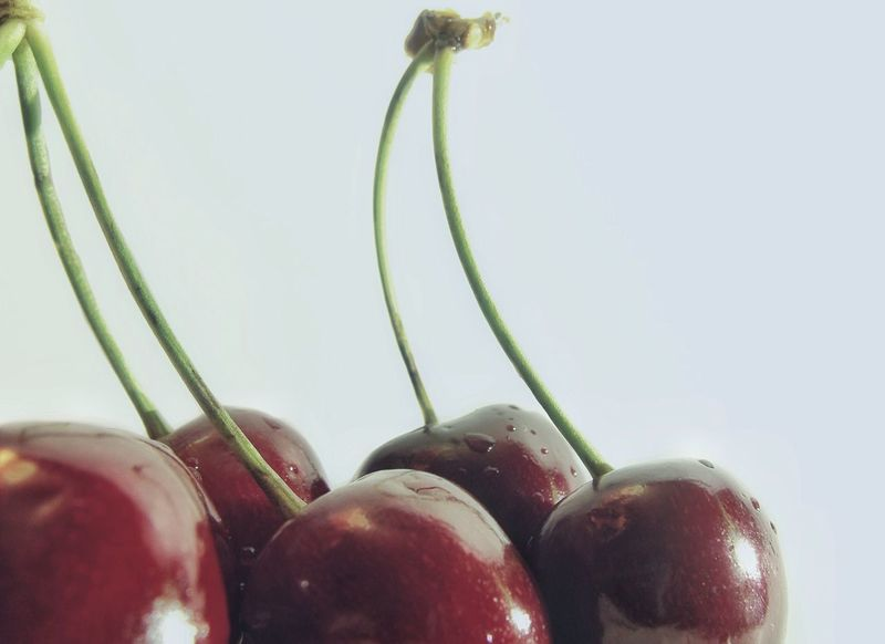 🍒 Cherry series 5️⃣ the last one 😄😂 Cherryred Cherries Cherry Fruits Fruits ♡ Summertime Food Photography Foodphotography Red Cherry Fresh Red White Background Taste Of Summer  Close-up Food Cherries🍒 Exceptional Photographs Maximum Closeness Visual Feast Sommergefühle