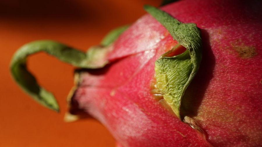 Pitaya (Detail) Drachenfrucht Food Fruit Healthy Eating Organic Pitahaya Pitaya Red