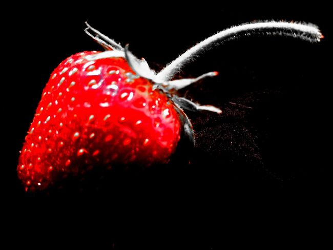 Red Black Background Strawberry Fruit Food And Drink Studio Shot Close-up No People Food Freshness Sweet Food Healthy Eating Water Indoors  Day