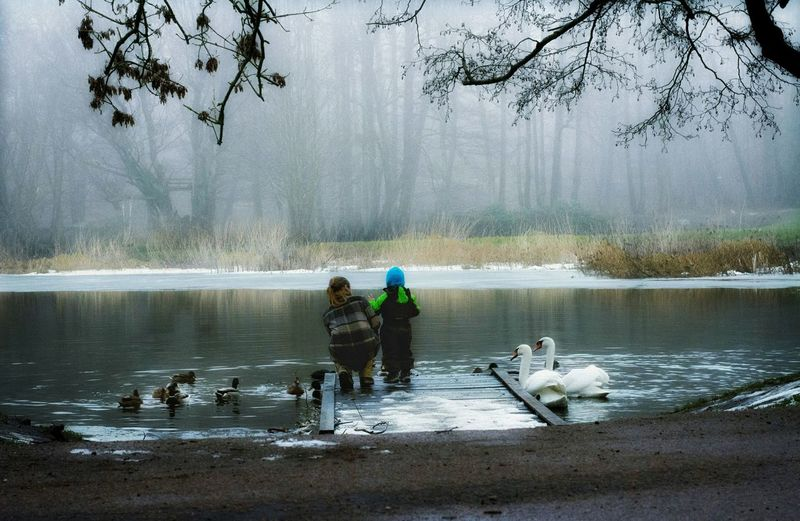 Water Nature_collection Nature Photography Naturelovers Compassion Tree_collection  Mist Fog Foggy Winter Wintertime Love Foggy Day Fog_collection Foggy Weather Trees Lake Water_collection Child Adult Mum Mom Family Swanes