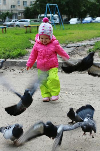 Baby Child Happy Happiness Action Capturing Movement Movement Pigeons