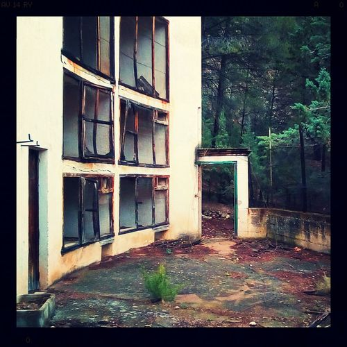 Time stopped for the trapped animals. Mobilephotography AlcatelPixi4 Lofi No People Aviary™ Old Places Exploring Abandoned Rusted Lumiocam Rust Creepy