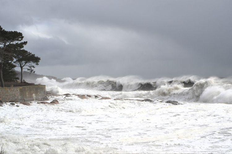 Backshore Magnolia, Ma high tide #NoFilter #Roughsea #Crashingwaves #hightide #Nature  #bombcyclone
