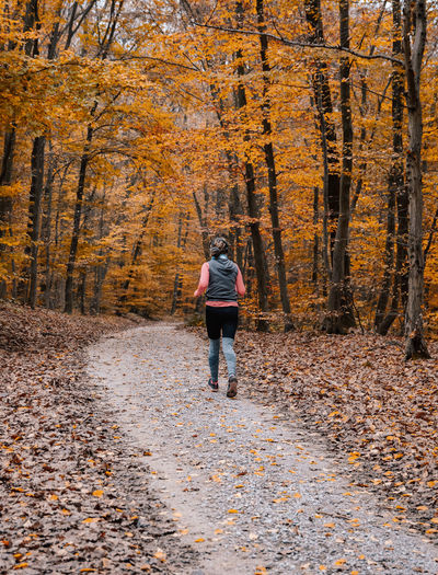 Rear view of young woman running in forest, recreation, autumn, fall, outdoors.