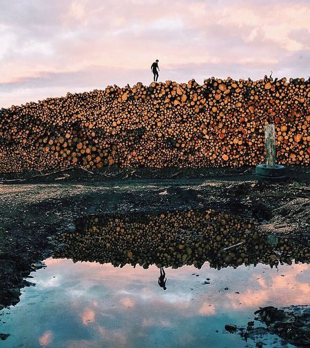 Woodpile reflections. The OO Mission Explore 43 Golden Moments Nature Check This Out