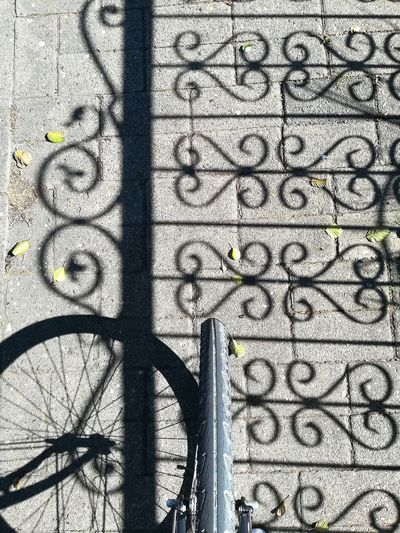 Shadows Bycicle Fahrrad Zaun Shadows & Lights Shadows Shadows Ornaments Ornament Ornamental Autumn Leaf Wheel High Angle View Fence Shadow Fence Natur Muster EyeEm Gallery Day Daylight Shadow Sunlight Full Frame Backgrounds Tree Pattern Close-up Focus On Shadow Long Shadow - Shadow LINE