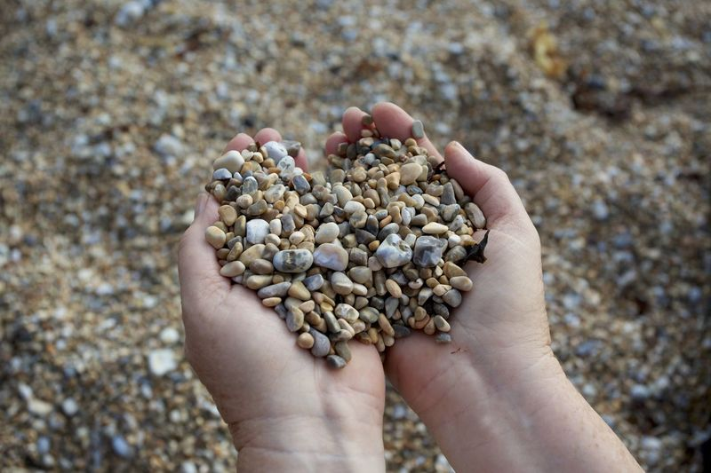 Close-up of person holding pebbles at beach