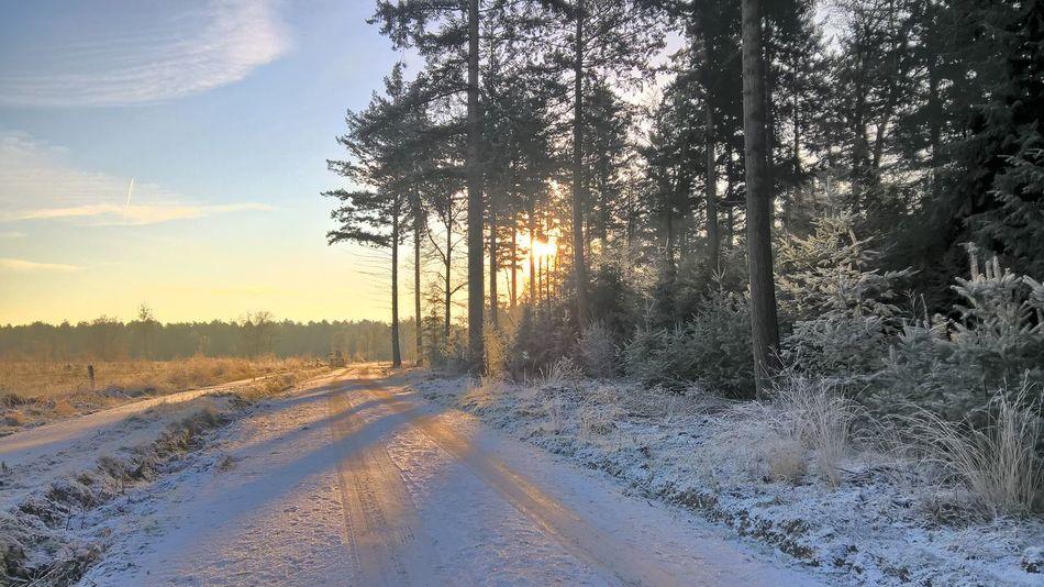 Winterwonderland Wintertime Ice Ice Babyyyyy ✌❄ Snowy Days... Nofilters #naturebeautiful #amazing