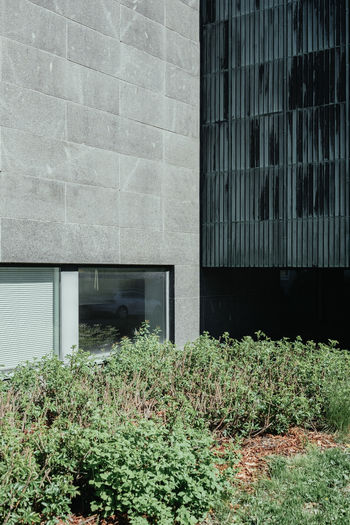 Travel Architecture Building Exterior Built Structure Close-up Day Grass Growth Nature No People Outdoors Plant Travel Destinations Window