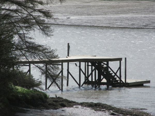 Landing stage Landing Stage Waterside Waters Edge Tides Out Mudflat Tree Branches Leap,Ireland West Cork Wildatlanticway Ireland