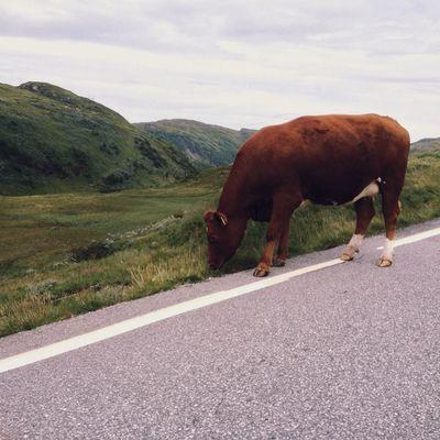 Walking Around Eye4photography Vscocam #vsco Norway