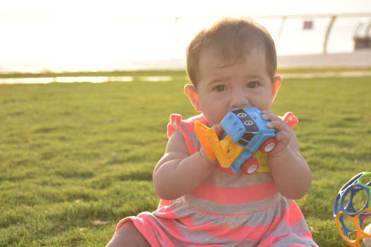 Close-up portrait of baby girl playing with toy car while sitting on grassy field