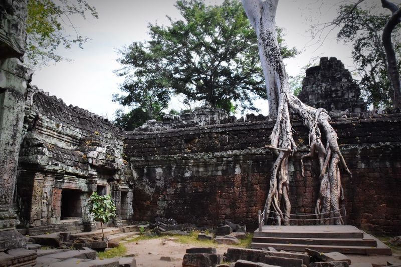 Old temple against trees