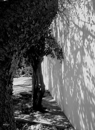 Shadows Street Photography Goodplace B&w good day!