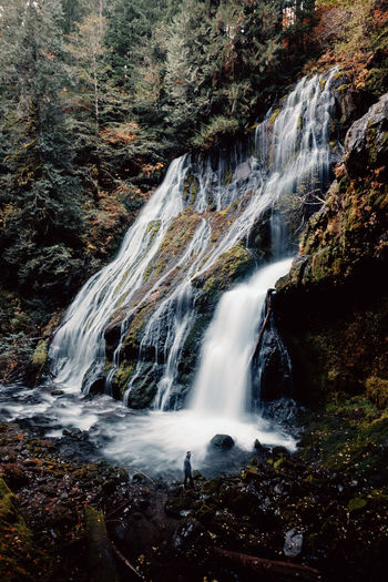Panther Nature Beauty In Nature Scenics Water Tranquility Tree Tranquil Scene Outdoors Forest Landscape Waterfall Growth Columbia River Gorge Washington Fall Autumn Travel Destinations The Week On EyeEm Perspectives On Nature Be. Ready.