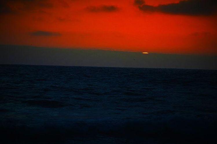 Sky Sea Sunset Horizon Over Water Horizon Water Beauty In Nature