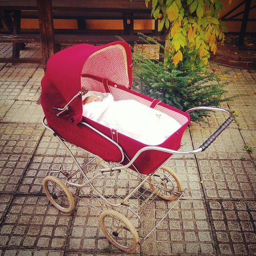 Stroller Pram Vintage Baby Red Autumn Fall Art On Wheels On Wheels Zekiwa