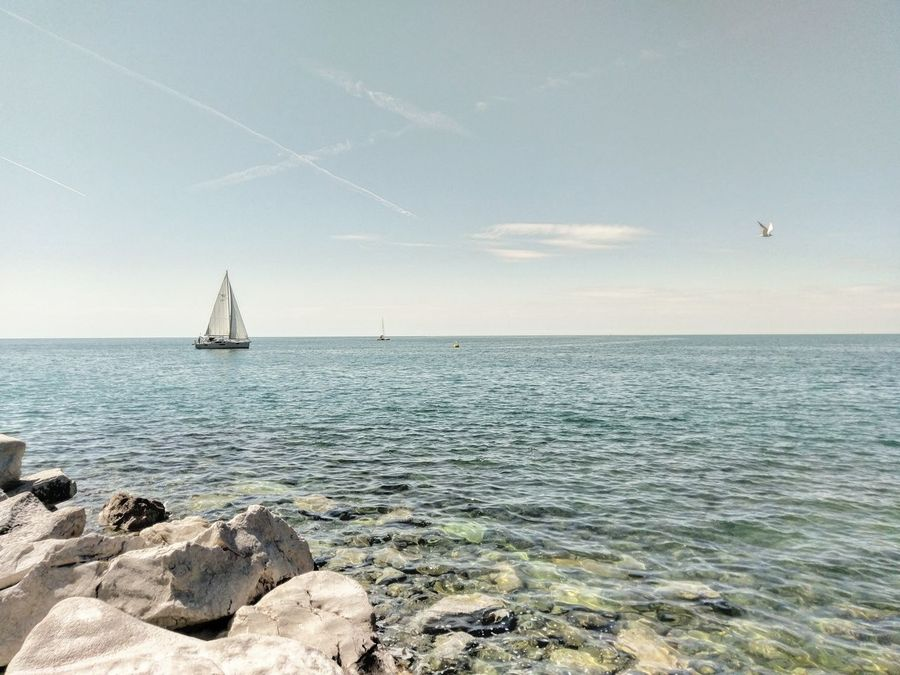 Horizon Over Water Sailboat Travel Sky Travel Destinations Outdoors Beauty In Nature Sea