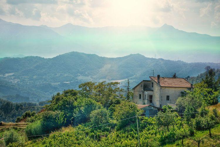 Vine - Plant Tree Mountain Rural Scene Agriculture Wine Vineyard House Social Issues Fruit