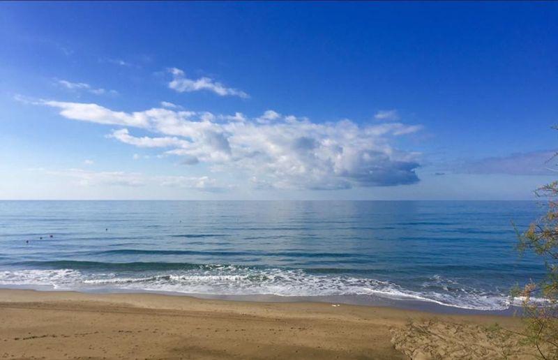Beach Sea Horizon Over Water Beauty In Nature Autumn Sea Autumn Sun