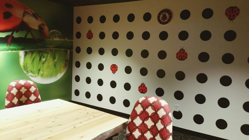 The Color Of School Ladybugs Red Fun Place To Learn Classes Ladybug Motif Fun Chairs Learning
