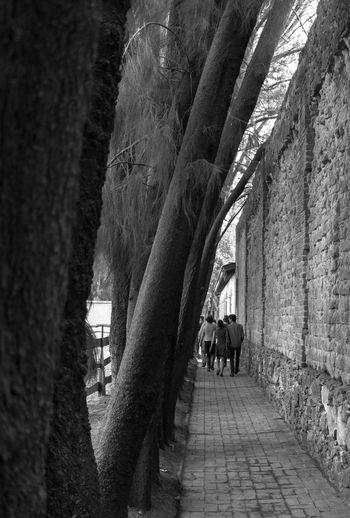 Rear view of woman walking in corridor of building