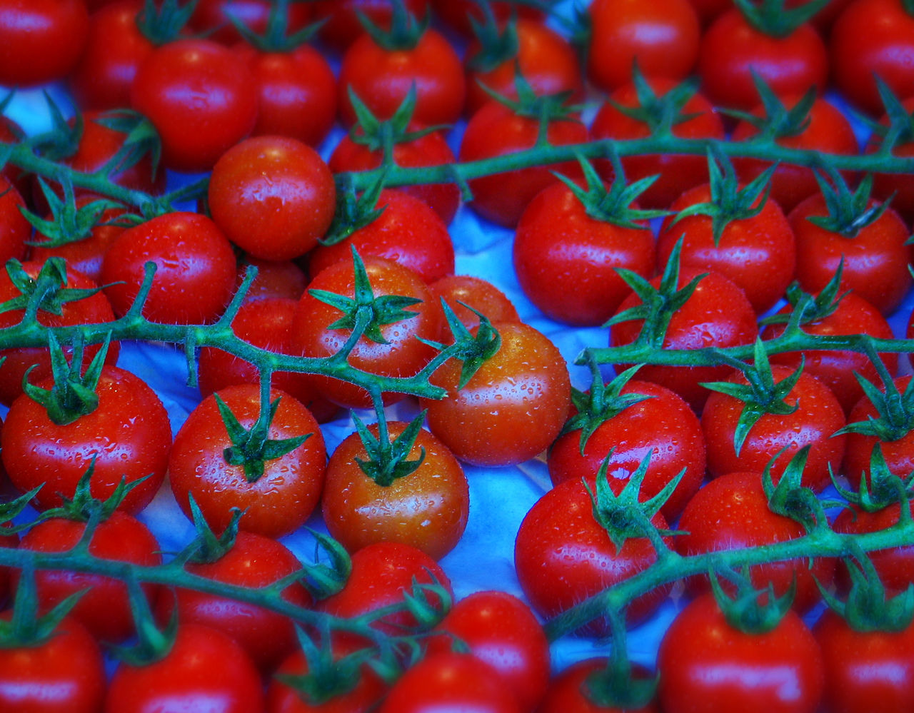 red, food and drink, food, fruit, freshness, healthy eating, wellbeing, full frame, backgrounds, close-up, vegetable, no people, still life, tomato, large group of objects, abundance, indoors, selective focus, for sale, market, ripe