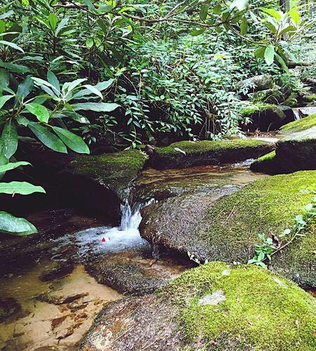 Red Fishing Bobber Mountain Stream Mountain Fishing Stream Red Mountain Water The Great Outdoors - 2017 EyeEm Awards