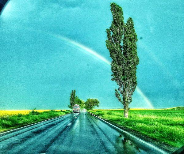 Road The Way Forward Green Color Outdoors Rainbow🌈 Water Rainy Days