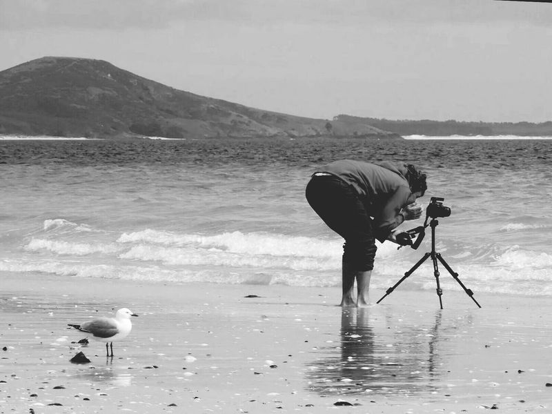 Doubltes bay Travel Photography Nature Streetphotography New Zealand what is he doing?