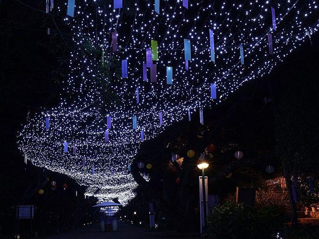 Milkyway Night Lights Nightphotography Goodnight