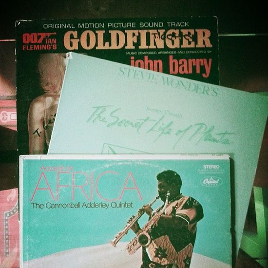 After the dig. Vinyls StevieWonder Goldfinger Vintage records
