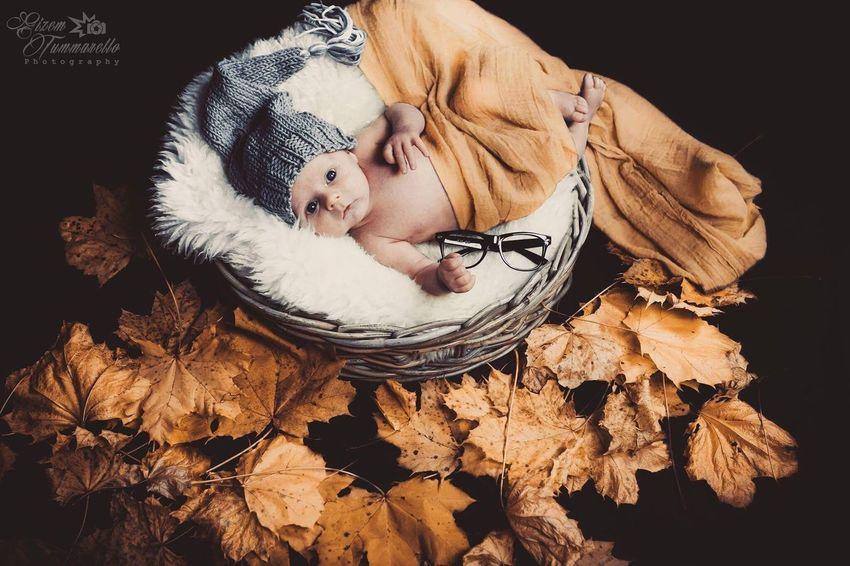 Autumn Autumn Colors Baby Itsaboy  Boy Sweet NewBorn Photography Newborn Baby Newborn Newborn Baby Boy Colors Color Portrait Colorful