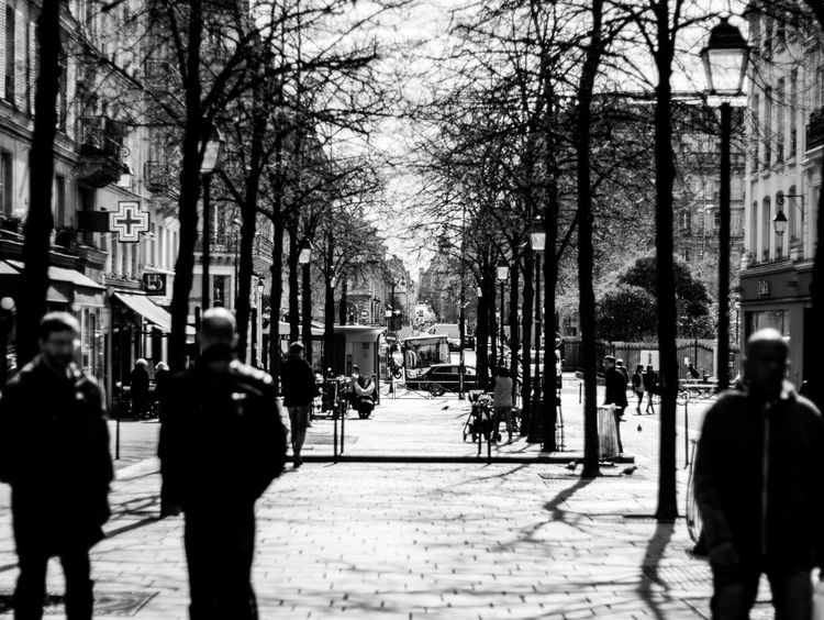 Paris Road Adult Ancient Architecture Architecture Blackandwhite Building Exterior Built Structure City City Life Day Group Of People Large Group Of People Men Nature Onepointperspective Outdoors People Real People Streetphotography The Way Forward Tree Tunnel Walking Women